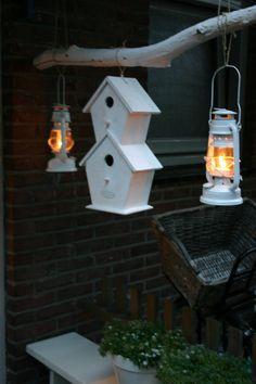 lantaarn, vogelhuis, lanterns, birdhouse