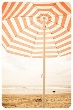 Enjoy the rest of summer!
