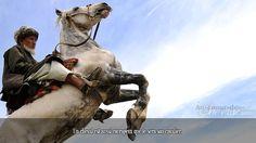 Un cheval est aussi courageux que le sera son cavalier.