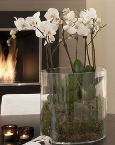 Elegant white orchids in a glass vase add a touch of style to a home. Add stones to bottom of vase to secure floral arrangement.