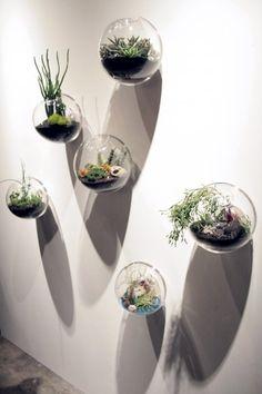 Ensemble de 5 moderne style en verre mur planteur vase, poisson rouge bol pour le décor de mur, maison ornement, maison décor, décoration de jardin