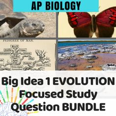 239 Best Teach AP Biology - Ideas and Activities images in 2019 | Ap