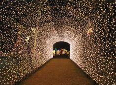Walkway of Lights at Lakeside Park , New Braunfels, TX