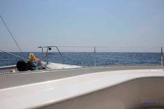 Bootsausflug mit einem Katamaran von Puerto Aventuras aus