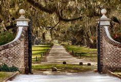 boone hall plantation | Charleston--Boone Hall Plantation