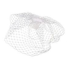 Celebrate It™ Occasions™ Bird Cage Veil with Swarovski Crystals at Michael's.