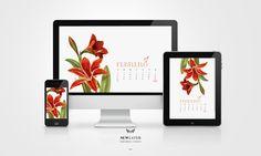 calendario_newlayer_2016 2016 Calendar