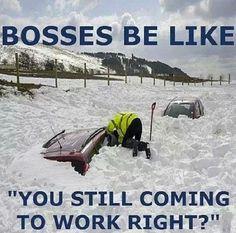 Bosses be like...