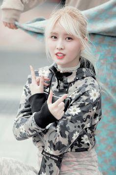 momo and twice image Kpop Girl Groups, Korean Girl Groups, Kpop Girls, Nayeon, Asian Woman, Asian Girl, Kyoto, Twice Fanart, Fandom