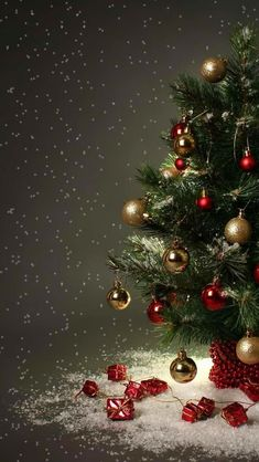 Are you looking for ideas for christmas aesthetic?Browse around this website for cool Christmas ideas.May the season bring you joy. Tree Wallpaper Phone, Wallpaper Natal, Christmas Phone Wallpaper, Holiday Wallpaper, Christmas Images Wallpaper, Christmas Scenes, Noel Christmas, Christmas Greetings, Winter Christmas