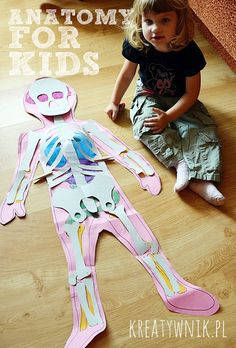 Anatomy for kids. What to do when your child is interested in human organs and human bones...