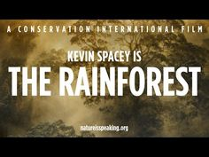 La Naturaleza Nos Habla -- Kevin Spacey es El Bosque Tropical | Conservación Internacional (CI) - YouTube