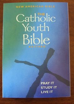 The Catholic Youth Bible New American Bible Revised | eBay