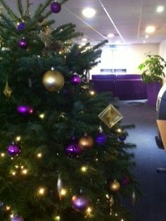 Purple and Gold Christmas Tree in Oxfordshire - Nature at Work