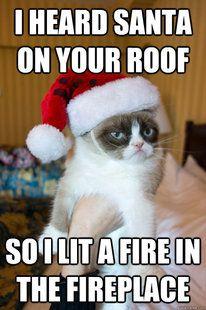 Grumpy Cat burns Santa