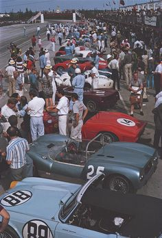 People Art Print featuring the photograph Bahamas Speed Week by Slim Aarons Vintage Racing, Vintage Cars, Vintage Auto, Racing Team, Auto Racing, Races Style, Triumph Spitfire, Ivy Style, Slim Aarons