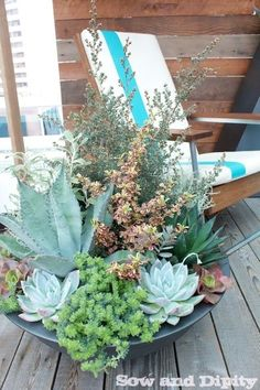 Amazing succulent dish garden by Pot's Incorporated, NWFGS display