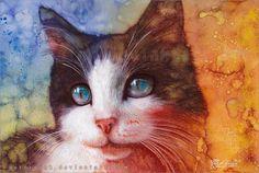 Contemplar esses olhos sábios! Afinal de contas, o gato sempre sem palavras, nós entendemos ... | Charlene Aurora Wienhold. Discussão sobre LiveInternet - Serviço russo diários on-line