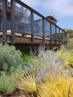 Glass Deck Rail Design, Pictures, Remodel, Decor and Ideas