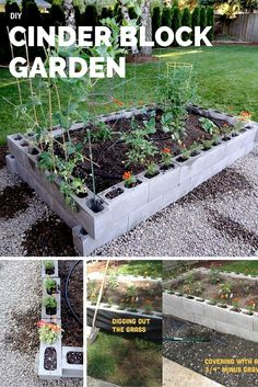 DIY Cinder Block Garden!