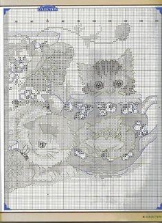 PLANETA PONTO CRUZ 2: Kittens fact Box