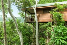 Eco-styled deluxe bungalow at Thala Beach Nature Reserve