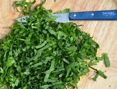 Bärlauch-fein-geschnitten
