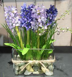 vaso con giacinti blue