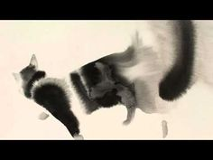 New Watercolor & Ink Cats That Slowly Bleed Into Paper By Endre Penovác - YouTube