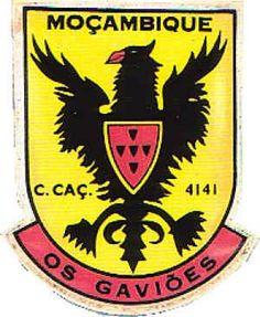 Companhia de Caçadores 4141 Lunho, Miandica e Malema 1972/1974 Moçambique