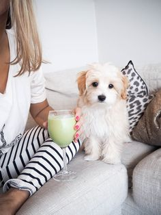 I love her pants and throw pillow! And th dog is so pretty!