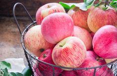 Apples Many Food
