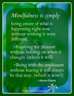 Midfulness is simply awareness - James Baraz #mindfulness #zen