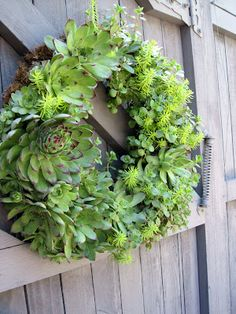 Simple Details: diy succulent wreath  GOTTA TRY THIS...BEAUTIFUL.