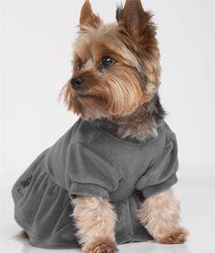 Juicy Couture Dog Dress, Juicy Dog Dress