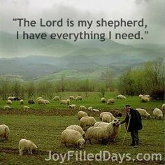 The LORD is my shepherd. I have everything I need.