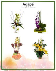004 Floral Arrangements, Magick