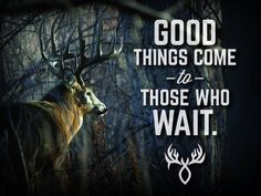 Responsible hunting, game management and wildlife conservation are important aspects of any wild game hunting, but many find the challenge of deer hunting to be the most challenging. Here are some ideas and deer hunting tips to make y Deer Hunting Humor, Whitetail Deer Hunting, Deer Hunting Tips, Hunting Camo, Hunting Girls, Hunting Stuff, Whitetail Bucks, Deer Camp, Big Deer