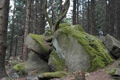 Zahlreiche Felsen und Klippen säumen den Weg.