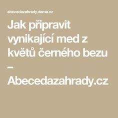 Jak připravit vynikající med z květů černého bezu – Abecedazahrady.cz