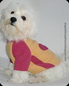 DIY Pets Crafts : DIY Dog Sweater Patterns