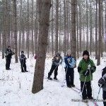 Family Cross-Country Skiing: Learn Like an Olympian!