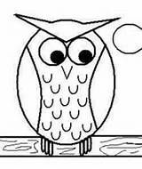 simple drawing silly owl - Yahoo Image Search Results
