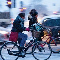 65ab319b2 Viking Biking. Winter CyclingCopenhagenBikingBicyclingCyclingTrack Cycling MotorbikesBicyclesRiding Bikes