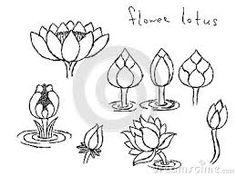 vietnamese lotus flower drawing - Google Search