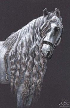 Retrato de caballo andaluz  lámina 30 x 20 cm  por ArtsandDogs