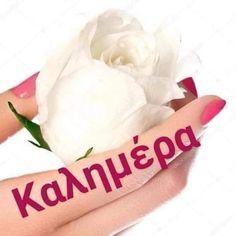Good Morning Coffee, Good Morning Good Night, Beautiful Pink Roses, Greek Language, Anastasia, Mom, Greek, Mothers