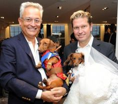 There Was A Royal Dachshund Wedding at Bergdorf's FNO Party - dachshund marries wiener bride Dachshund Facts, Dachshund Funny, Dachshund Love, I Love Dogs, Puppy Love, Cute Dogs, Funny Videos, Weenie Dogs, Doggies