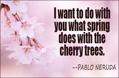 "blossom<3 geesh. this quote made the butterflies in my belly awaken with delight<3 this dude was hard core. ""i want to do with you what spring does with cherry trees"" .. pablo neruda"