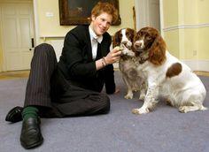 British Royal Family | 223703-the-british-royal-family-with-animals.jpg